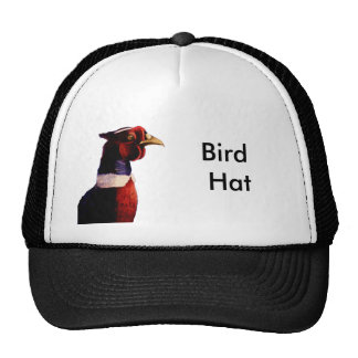 Roostins, Bird Hat