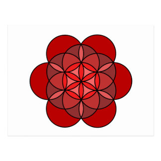 Root Flower of Life Postcard