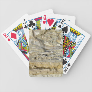 Root fossils in limestone seawall bicycle playing cards