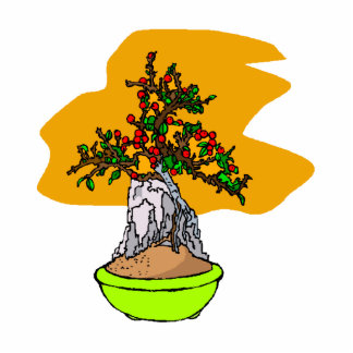 Root Over Rock Berry Bonsai Graphic Image Photo Cutout