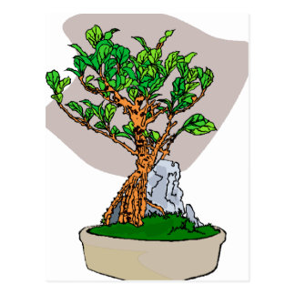 Root Over Rock Bonsai Grey Back Graphic Image Postcard