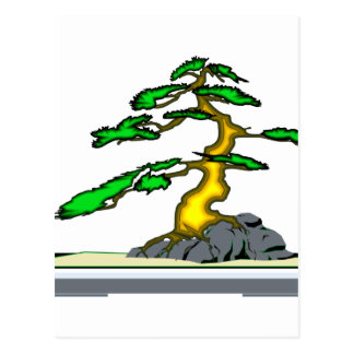 Root Over Rock Bonsai Old in Grey Tray Postcard