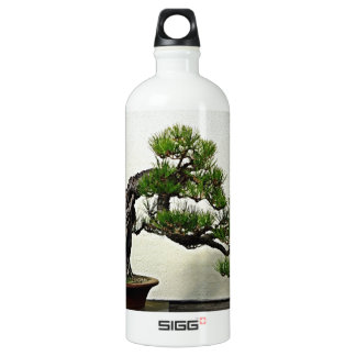 Root Over Rock Pine Bonsai Tree Aluminum Water Bottle