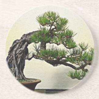 Root Over Rock Pine Bonsai Tree Drink Coaster