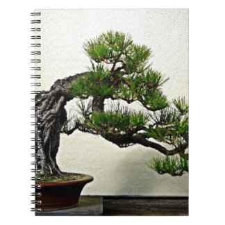 Root Over Rock Pine Bonsai Tree Notebook