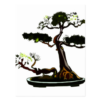 Root Over Rock Upright Pine Bonsai Graphic Image Postcard