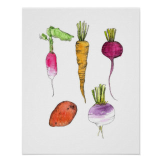 Root Vegetables Watercolor Ink Kitchen Art Poster