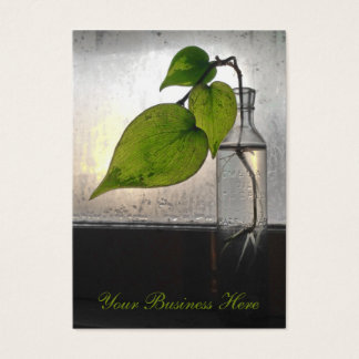 Rooting Plant in a Antique Clear Glass Bottle Business Card