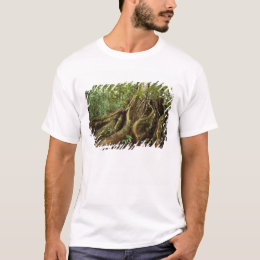 Roots and Trunk of Sloanea Tree T-Shirt
