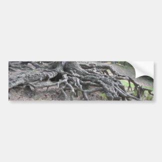 Roots Bumper Sticker