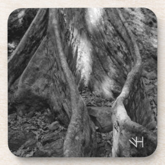Roots Coaster