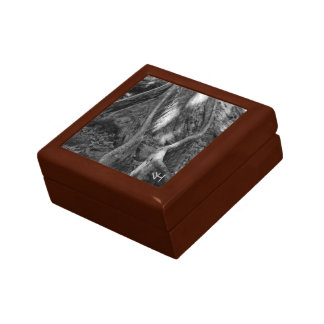 Roots Trinket Boxes