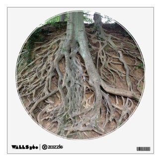 Roots of a Tree Wall Decal