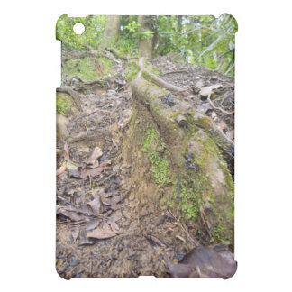 Roots of the Forest iPad Mini Covers