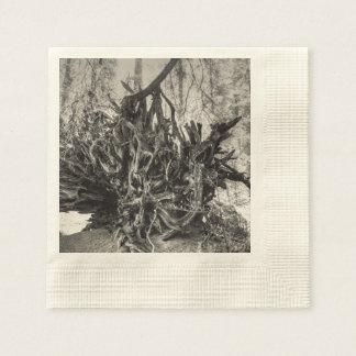 Roots Paper Napkins