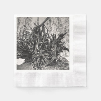 Roots Disposable Napkins
