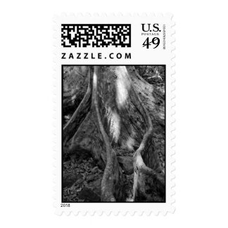 Roots Stamps