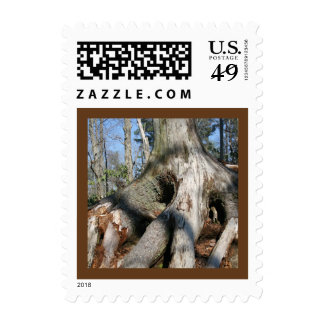 Roots postage