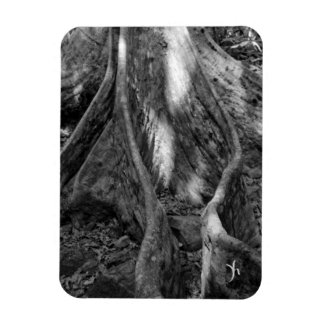 Roots Rectangle Magnets