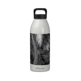 Roots Reusable Water Bottle