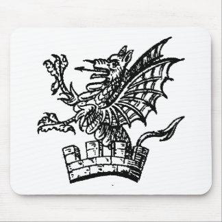 Ropa 16 del dragón alfombrilla de ratones