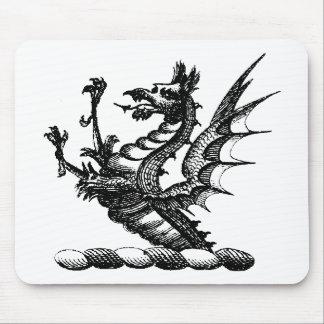 Ropa 32 del dragón alfombrillas de ratón