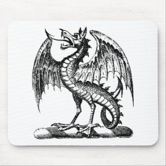 Ropa 37 del dragón alfombrillas de ratón