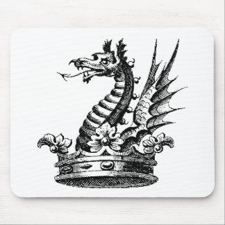 Ropa 41 del dragón tapetes de ratón