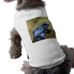Ropa azul del mascota de la rana del dardo del ven prenda mascota