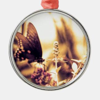 Ropa de la mariposa ornamentos de reyes magos