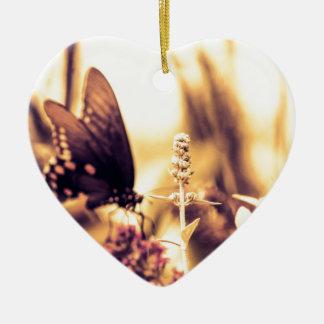 Ropa de la mariposa adorno para reyes