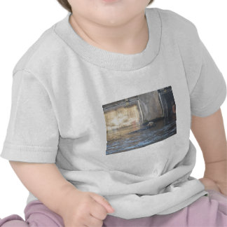 Ropa de la nutria camiseta