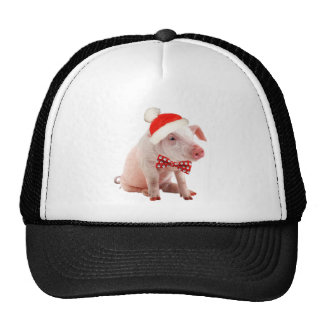 Ropa del día de fiesta del cerdo de la barriga gorros