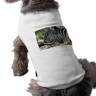 Ropa del mascota de la actitud de la cebra playera sin mangas para perro