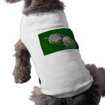 Ropa del mascota de la tortuga camisa de mascota