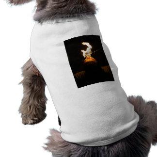 Ropa del mascota del comedor de fuego camisas de mascota