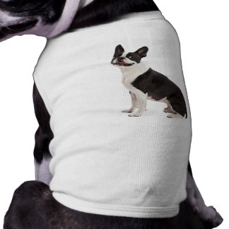 Ropa hermosa del mascota de la foto del perro de B Camisa De Perro