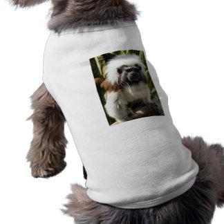 Ropa marrón y blanca linda del mascota del mono playera sin mangas para perro