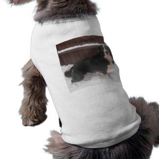 Ropa Sprollie del perro en la nieve Ropa Macota