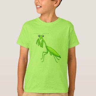 Ropa verde de la juventud de la mantis religiosa playera