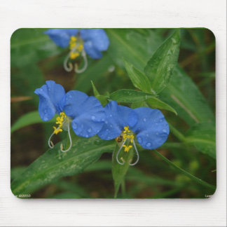 Ropa y regalos azules del WIldflower del Dayflower Mouse Pads