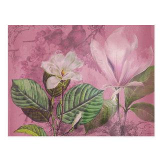 Ropa y regalos de la canción de la magnolia del tarjeta postal