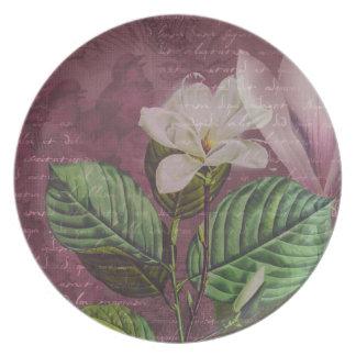 Ropa y regalos de la canción de la magnolia del vi plato de cena