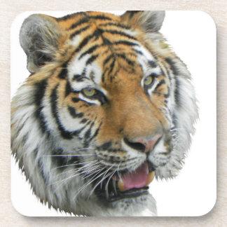 Ropa y regalos principales del tigre posavaso