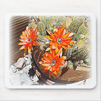Rope Cactus Blooms Mouse Pad