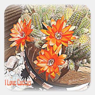 Rope Cactus Blooms Square Sticker