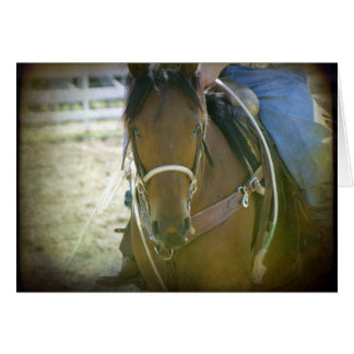 Roping Horse Card