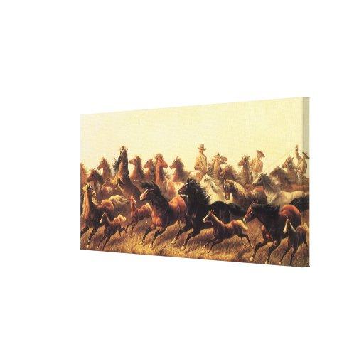 Roping Wild Horses by James Walker Canvas Print