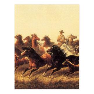 Roping Wild Horses by James Walker Post Card