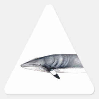 Rorcual aliblanco triangle sticker